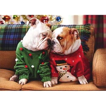 Amazon.com: AVANTI Card Christmas Bulldogs In Sweaters, 1