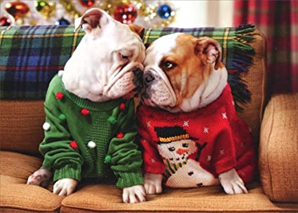 christmas bulldogs in sweaters avanti stand out pop up dog christmas card