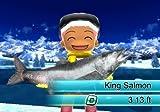 Fishing Resort - Nintendo Wii