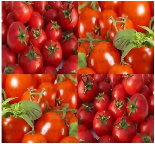 Amazon Com Large Red Cherry Grape Tomato Seed Heirloom Tomato