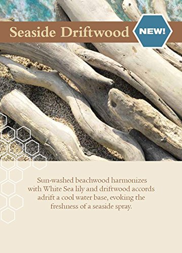 Root Legacy Veriglass Scented Beeswax Candle, Large, Seaside Driftwood by Root (Image #4)
