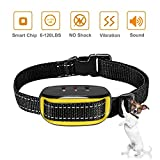 No Bark Collar, No Shock Humane Bark Collar Small Medium Dog Neck Sized up to 55cm with Sound and Vibration Modes, Yellow