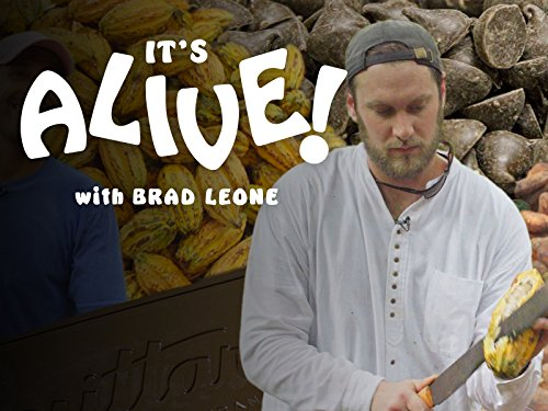 Brad Makes Chocolate in Ecuador: Part 1