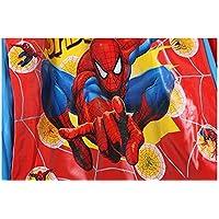 horizon where hope spread Spiderman Boys Portable Cartoon Long Raincoat Rain Poncho Hoods Sleeves S M L XL XXL (L)