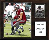 C&I Collectables NFL Tampa Bay Buccaneers Vincent Jackson Player Plaque, 12 x 15-Inch