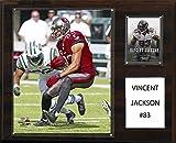 NFL Tampa Bay Buccaneers Vincent Jackson Player Plaque, 12 x 15-Inch