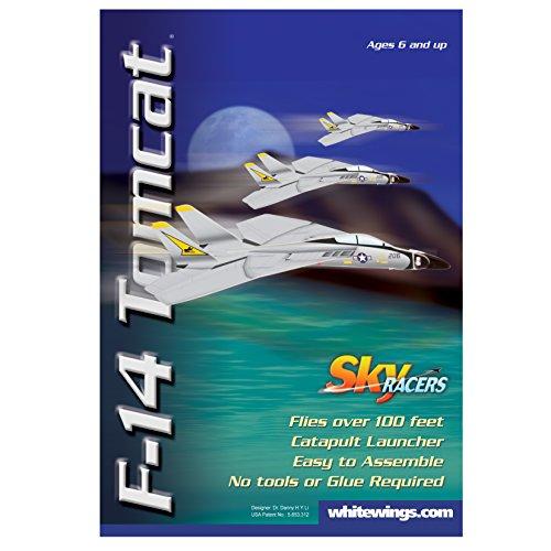 Blue Sky Carrier (Sky Blue Flight F-14 Tomcat Model Kit)