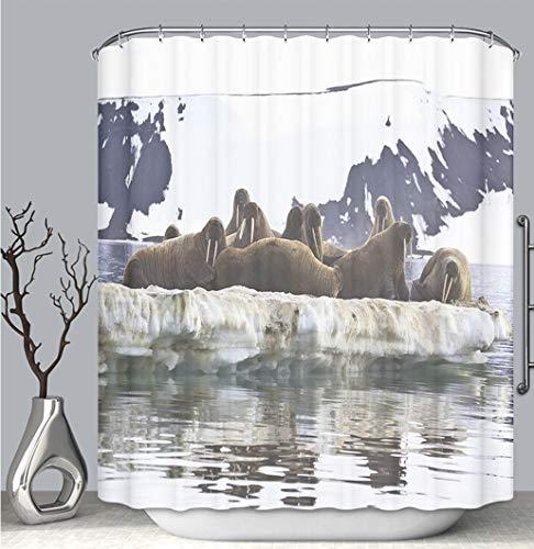 BEICICI Color Shower Curtain Liner Anti-Mildew Antibacterial, Walrus Colony in Franz Josef Land Multi-Color,Custom Shower Curtain Bathtub Bathroom Accessories.