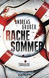 Rachesommer: Walter Pulaski 1 - Thriller