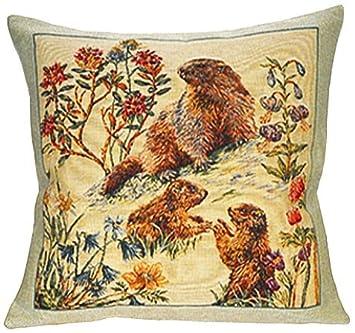 Amazon.com: Cojín – tapiz de tela, francés, fino y elegante ...