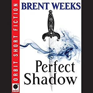 Perfect Shadow | Livre audio