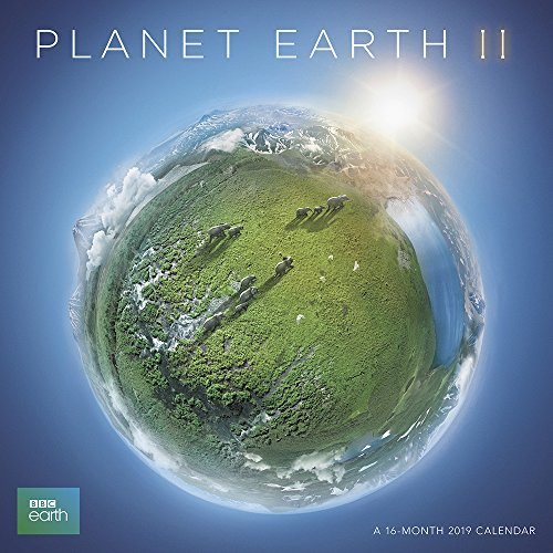 Planet Earth Wall Calendar (2019) by Day Dream