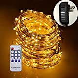 Dreamworth 165ft Led String Lights,500 Led Starry Lights on 50M Silver Coating Copper Wire String Lights + 12V DC Power Adapter + Remote Control(Warm White)