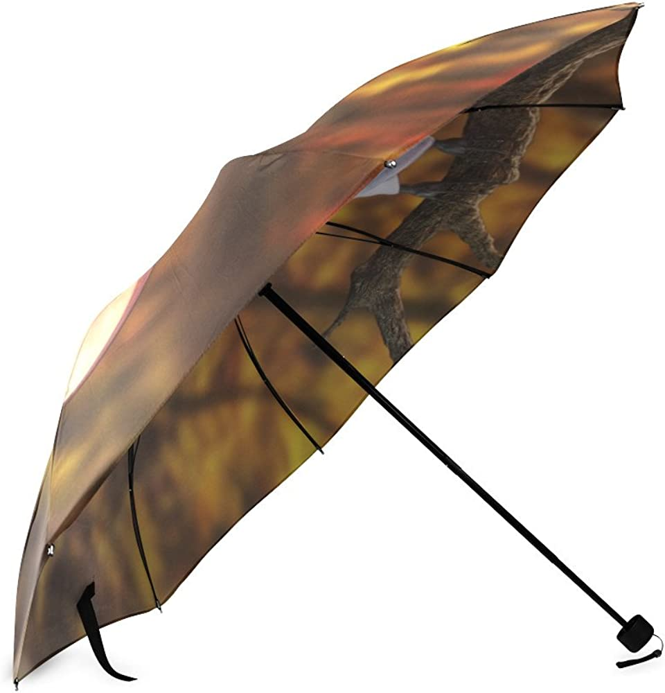 Umbrella Bat Custom Umbrella Automatic Folding Umbrella Rainproof /& Windprrof