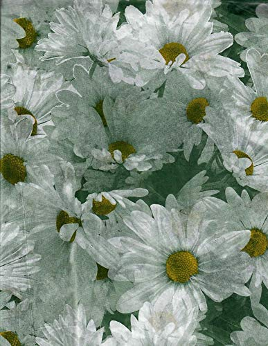Daisy Tissue Paper # 343-10 Large Sheets