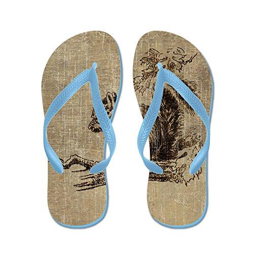 Cafepress Vintage Ekorre - Flip Flops, Roliga Rem Sandaler, Strand Sandaler Caribbean Blue