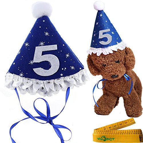 Blue Pet Dog Cat Birthday Holiday Party Hat Headwear Costume Accessory with a White Ball and Lace for Small Medium Dogs Cats Pets (5-5th year) (Dollar Scarves)