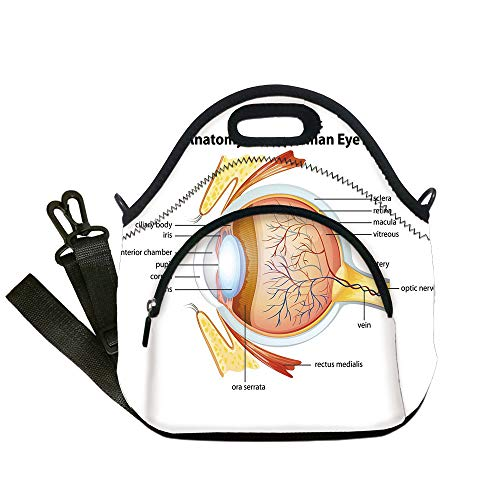Insulated Lunch Bag,Neoprene Lunch Tote Bags,Educational,Human Eye Anatomy Cornea Iris Pupils Optic Nerves Graphic Print Decorative,Coral Mustard Baby Blue,for Adults and children - Gator Grip Insulated Handle
