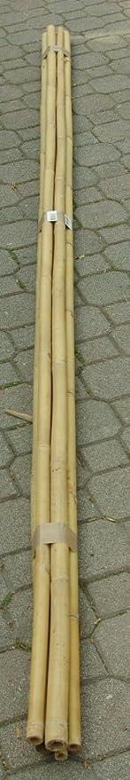 Cañas de bambú para sujetar hortalizas y otros usos, 150 cm ...