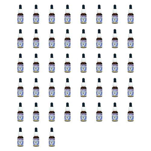 2019高い素材  ヒマラヤン フラワー 全シングルエッセンス キット(56本セット) B00MZP073S 15ml 日本国内正規品 15ml 日本国内正規品 B00MZP073S, リサラーソンSHOP:960f6823 --- egreensolutions.ca