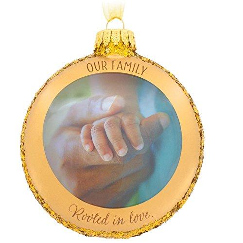 Hallmark Mahogany Our Family Glass Christmas Ornament