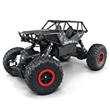 1/18 Alloy RC Cars with two batteries Remote Control Truck 4x4 Off Road Rock Crawler for Boys 2.4GHz Radio Controlled Monster for kids(Black)