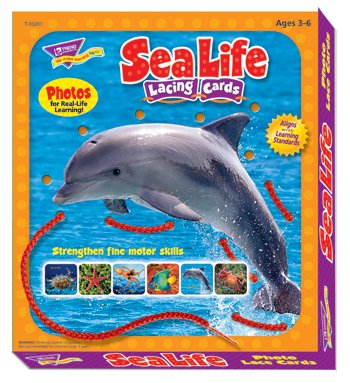 Trend Enterprises Inc. Lacing Cards Sea Life