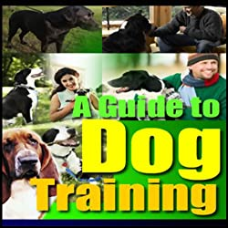A Guide to Dog Training