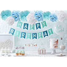 Wcaro Blue Happy Birthday Bunting Banner Hanging Tissue Paper Pom Pom 9pcs Baby Blue Turquoise White 10inch Paper Flowers Rose Hanging Decoration Balls For Birthday Party