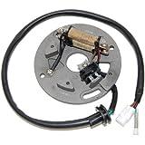 ElectroSport ESC140 Stator YZ250