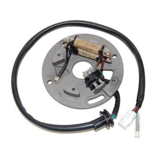 ElectroSport ESC140 Stator (Yz250 Stator)