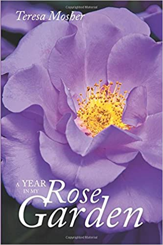 A Year In My Rose Garden