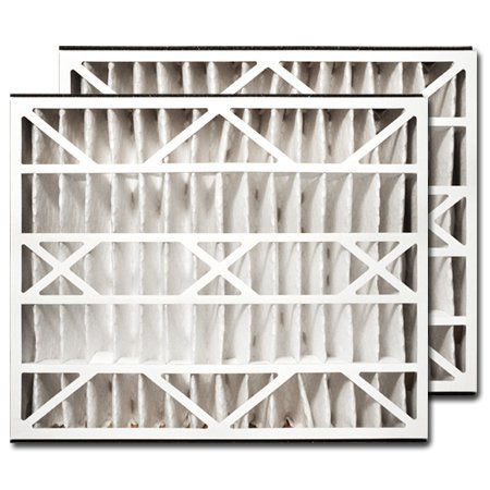 Trion Air Bear 255649-102 Replacement Filter - 20x25x5 by Trion by Trion