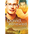 David, Renewed (Delta Restorations Book 1)