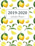 img - for 2019-2020 Calendar Planner: 2019 - 2020 Two Year Calendar Planner | Daily Weekly And Monthly For Academic Agenda Schedule Organizer Logbook and ... 2020 Daily Weekly Monthly Planner) (Volume 5) book / textbook / text book