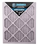 AirShield 60001-202-0030 Odors & Allergens MERV 8 OdorBan Furnace Filters with Activated Carbon (2 Pack), 16 x 25 x 1''
