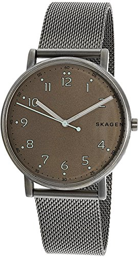 Skagen  Men's  SKW6354 Signatur Titanium and Steel-Mesh - Mesh Titanium Watch