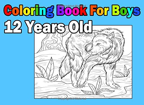 Coloring Book For Boys 12 Years Old: Landscape Format, Coloring Book In:  9781981448876: Amazon.com: Books