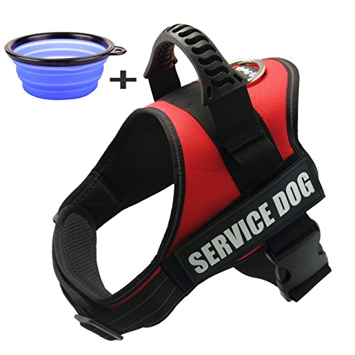 Service Dog Vest Small Amazon