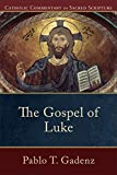 img - for The Gospel of Luke (Catholic Commentary on Sacred Scripture) book / textbook / text book