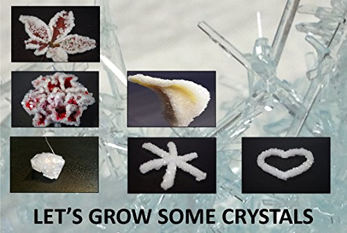 stem toys for boys Crystal Growing Science Kit- Safe And Easy to Use. Everything You Need to Grow Different Crystal Shapes And Colors Like a Heart, Snowflake And a Huge Crystal Gem.