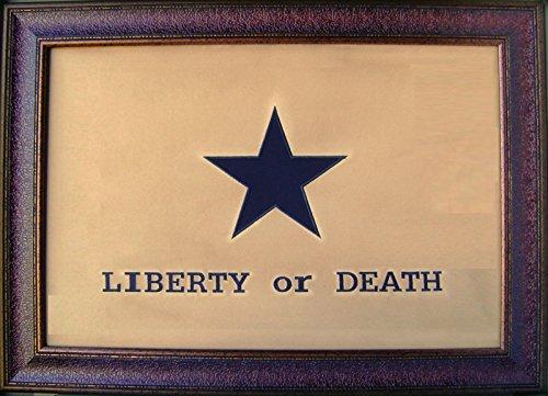 W890 Large Liberty or Death Flag Rustic Western Texas Wall Decor Art