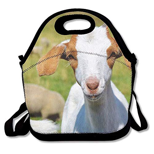 Classic Goat - crysss White Sheep Goat Classic Lunch Bag Reusable Lunch Tote Lunch Box Handbag For Womens Mens Kids