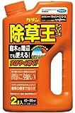 カダン 除草剤 ストレートタイプ ザッソージエース 2L