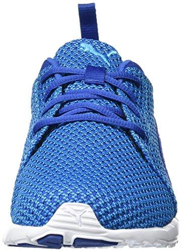 Herren Knitted Carson Laufschuhe true 02 Blue Danube Puma Blue Blau 4q7dvwp7nP