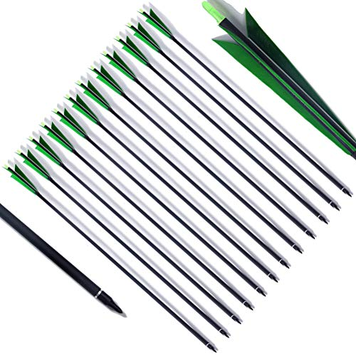 (PG1ARCHERY 30 Inch Carbon Arrows 5.8