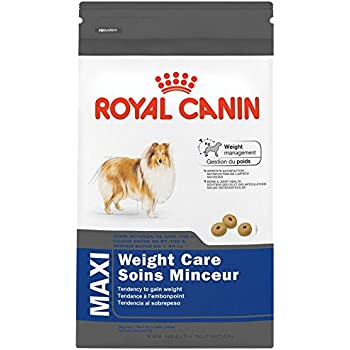 Amazon Com Royal Canin Canine Weight Control Dry Small
