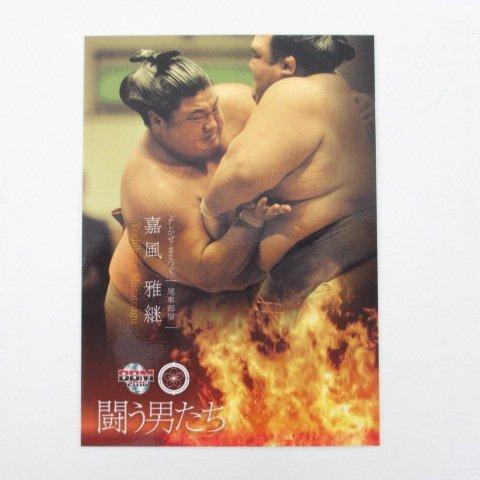 BBM2016大相撲カード「彩」■レギュラーカード■No.62/嘉風雅継/闘う男たち