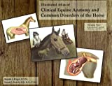 Illustrated Atlas of Clinical Equine Anatomy and Common Disorders of the Horse Vol. 2 : Reproduction, Internal Medicine and Skin, Riegel, Ronald and Anatomical Chart Company Staff, 0965446115