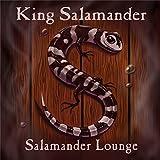 Salamander Lounge by Kim Nazarian (2013-05-04)